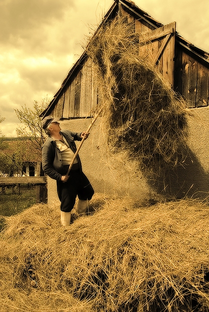 Putting up the Hay