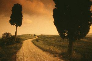 Road near Pienza