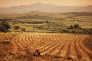 Hay harvest near Pienza