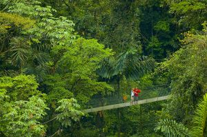 Arenal Hanging Bridge, Costa Rica