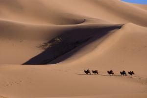 Honguran Els, Mongolia
