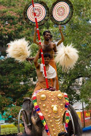 Brahmins at Pooram