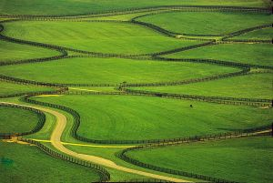 An aerial of a horse farm near Lexington, Kentucky