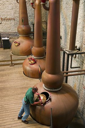 Copper stills at Woodford Reserve Distillery