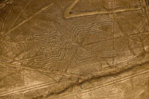 The Spider, one of the Nazca Lines